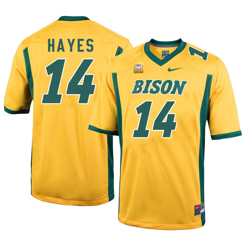 Men #14 Josh Hayes North Dakota State Bison College Football Jerseys Sale-Yellow